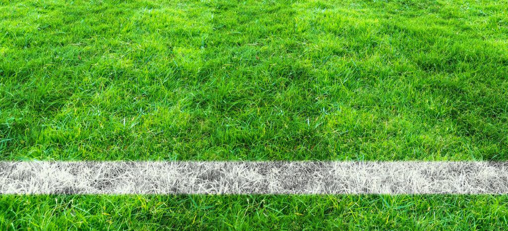 Artificial turf for playing soccer in the fall and winter