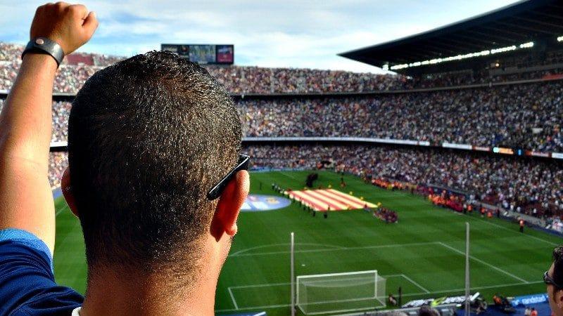 Soccer fan in stadium